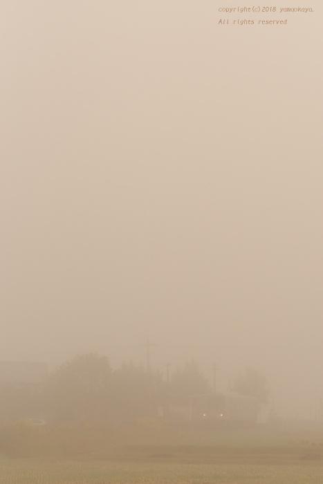 晴れる前、霧の中_d0309612_22184124.jpg