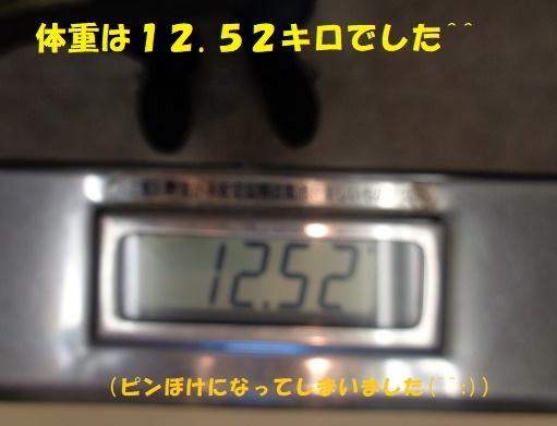f0121712_15343463.jpg