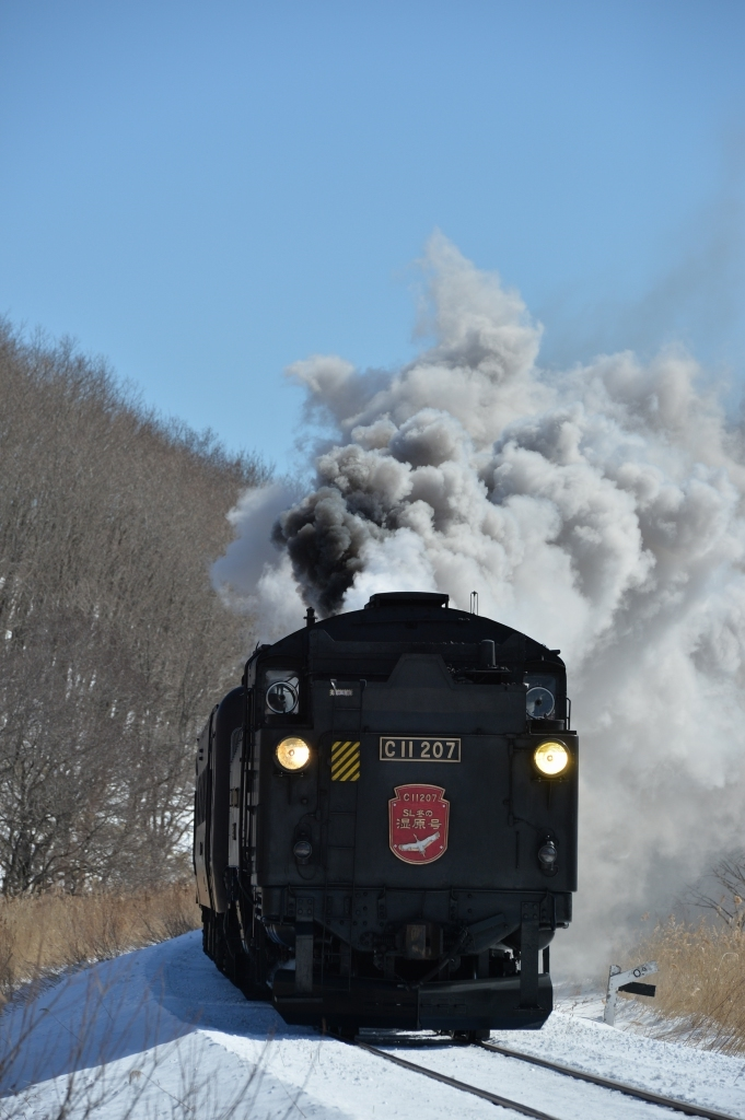 鉄道写真_f0050534_12385031.jpg