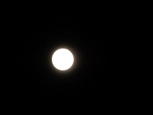 今夜は満月_e0175370_21481388.jpg