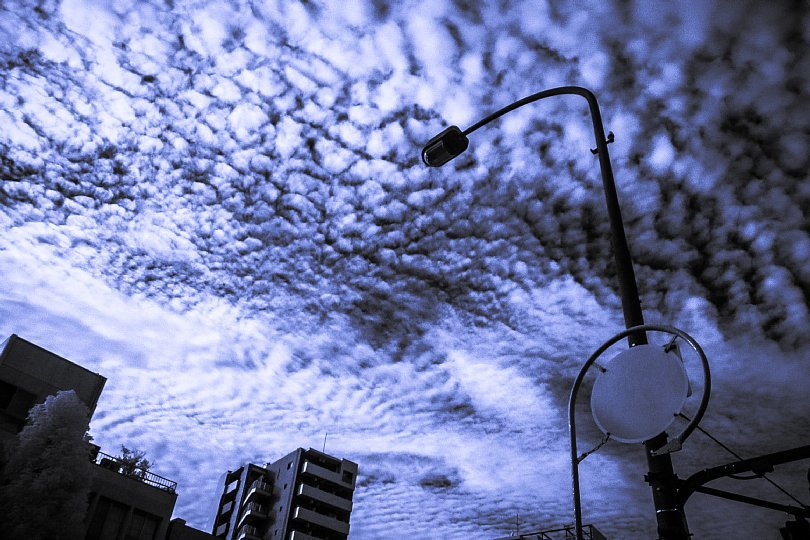 秋空に立ち尽くす消火栓看板たち_d0353489_22093825.jpg