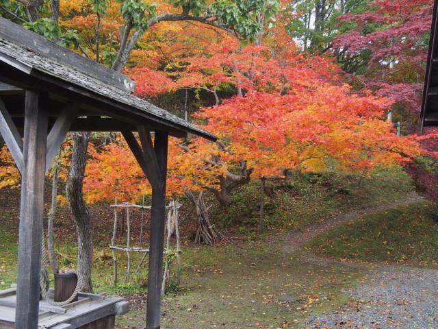 再び 旧島松駅逓へ(10/23)_c0360399_15532038.jpg