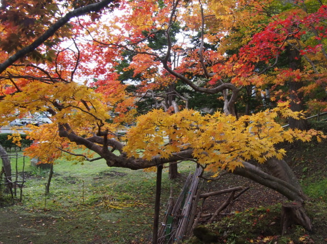 再び 旧島松駅逓へ(10/23)_c0360399_17452358.jpg