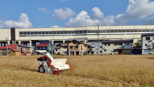 駐車場は今年最後の草刈り作業をしました_c0336902_21295154.jpg