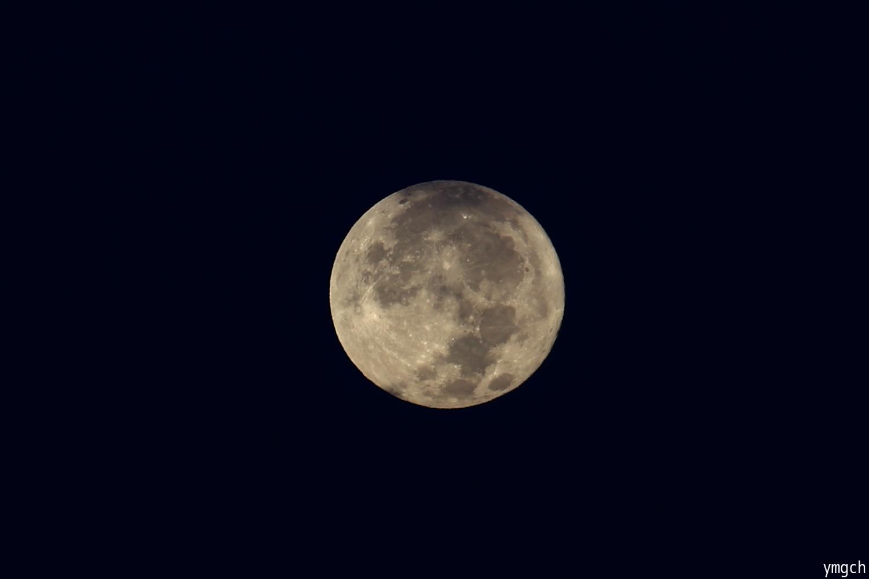 再びのパール富士ならず・・・_f0157812_08291904.jpg