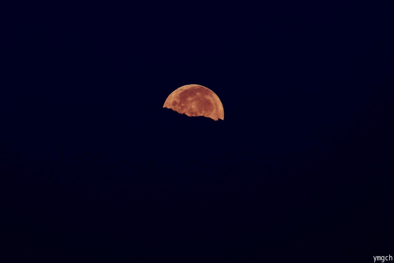 再びのパール富士ならず・・・_f0157812_08292015.jpg