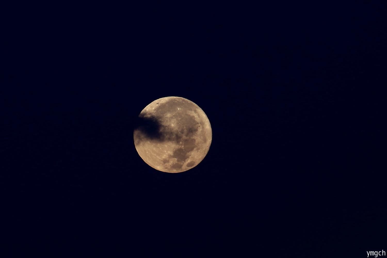 再びのパール富士ならず・・・_f0157812_08292046.jpg