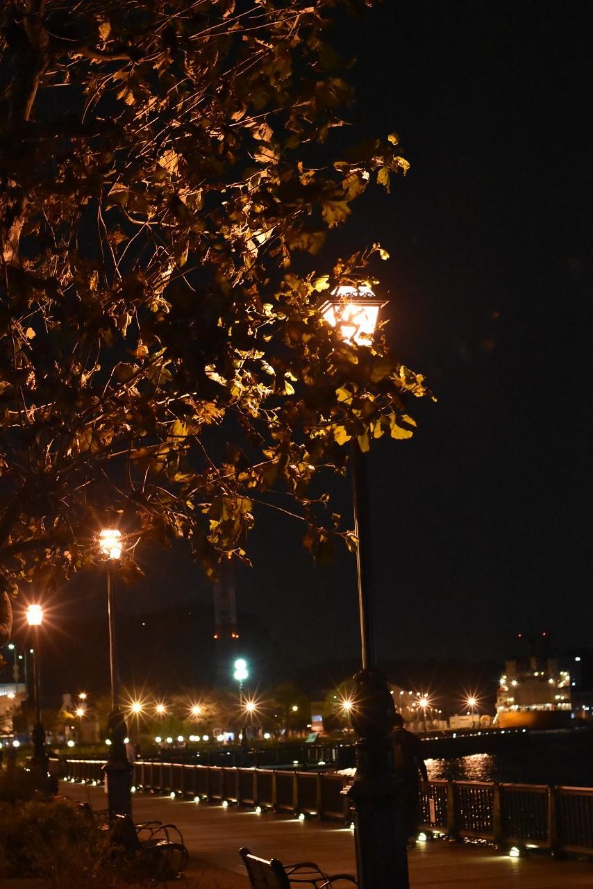 ヴェルニー公園 オレンジの光と_d0065116_20204512.jpg