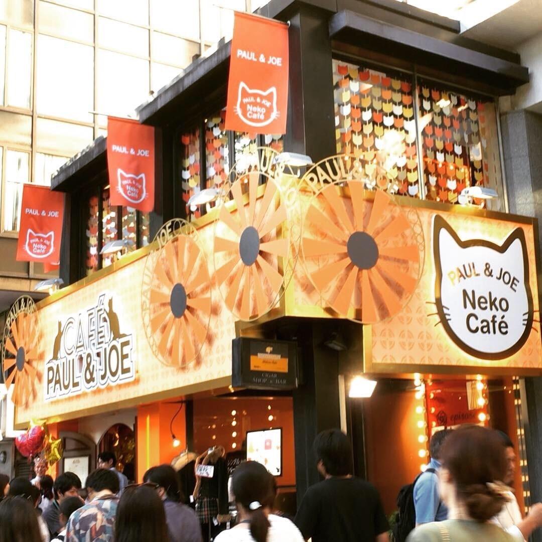期間限定 Neko Cafe に行きました。_a0021523_09263136.jpg