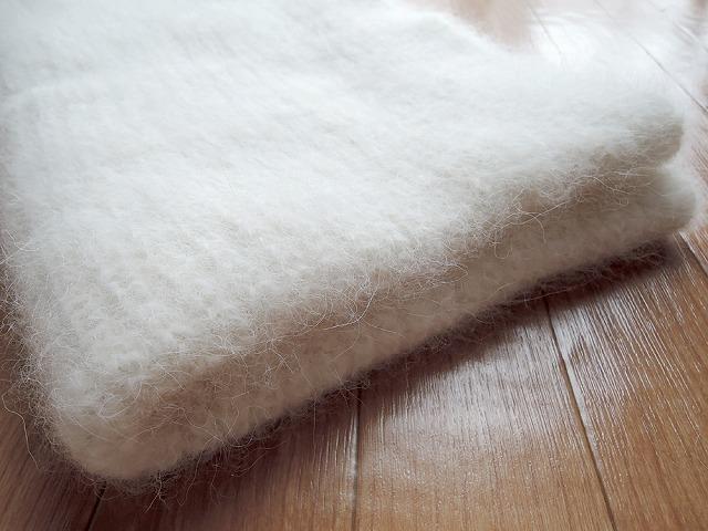 【極秘】犬の毛プロジェクト_c0062832_19441700.jpg