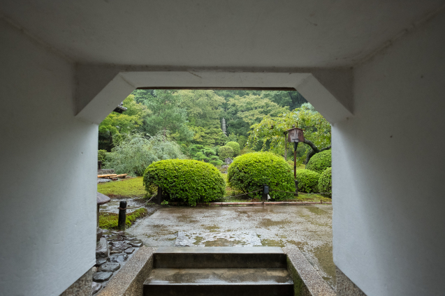 雨の青蓮院_e0369736_09301337.jpg