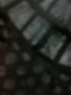 b0136144_3244044.jpg