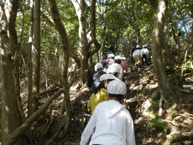 淡輪小学校1年生遠足「うみべの森散策」_c0108460_15135557.jpg