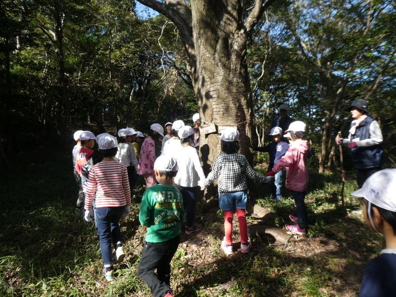 淡輪小学校1年生遠足「うみべの森散策」_c0108460_15153037.jpg