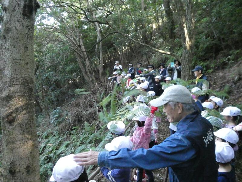 淡輪小学校1年生遠足「うみべの森散策」_c0108460_15153170.jpg