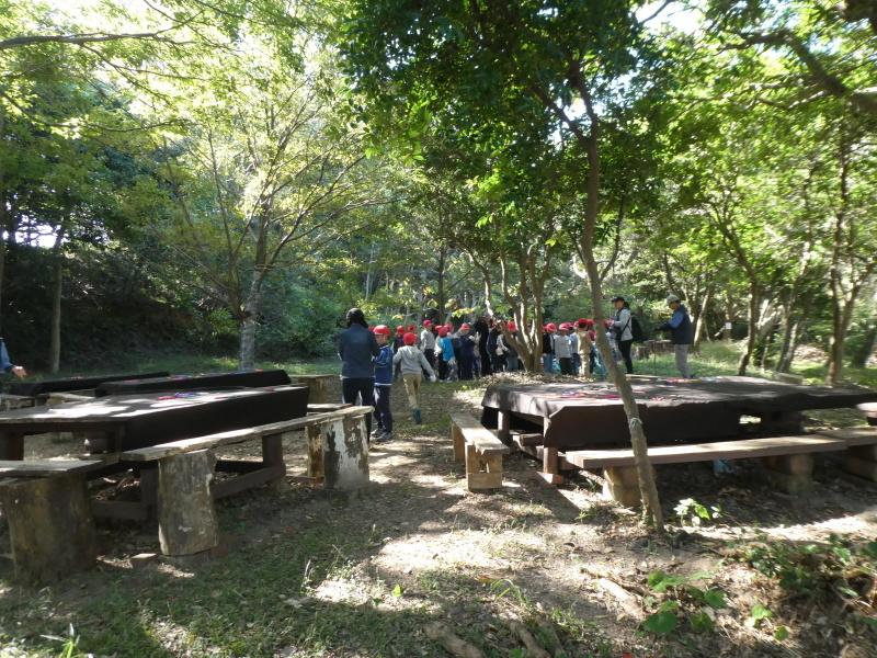 淡輪小学校1年生遠足「うみべの森散策」_c0108460_15213317.jpg