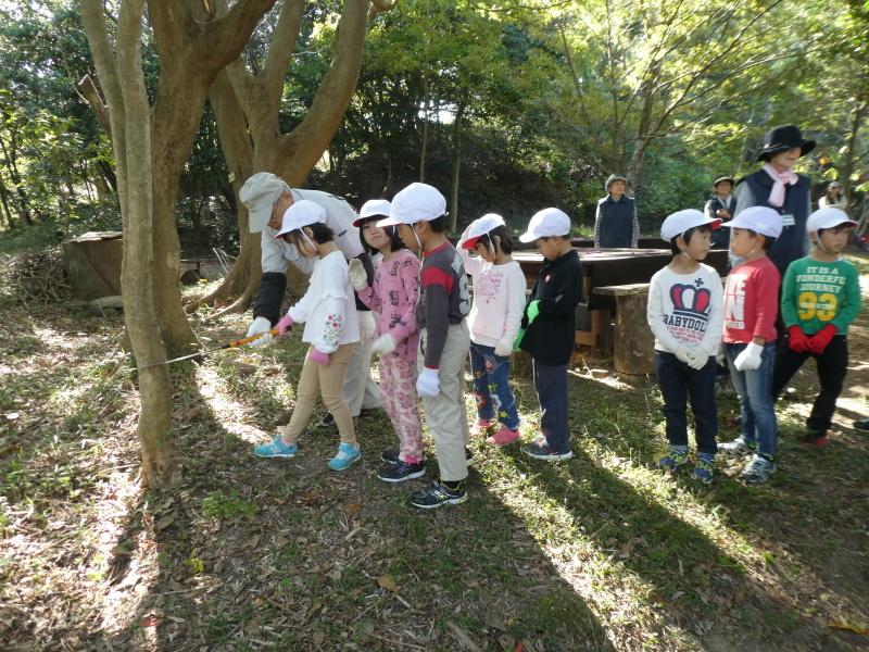 淡輪小学校1年生遠足「うみべの森散策」_c0108460_15222843.jpg
