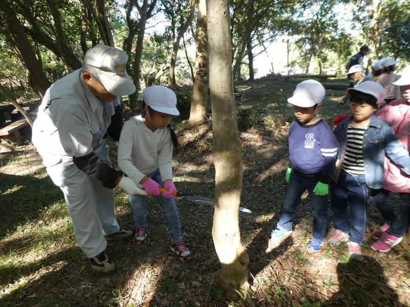 淡輪小学校1年生遠足「うみべの森散策」_c0108460_15222995.jpg