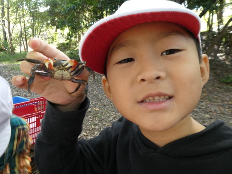 淡輪小学校1年生遠足「うみべの森散策」_c0108460_15261037.jpg