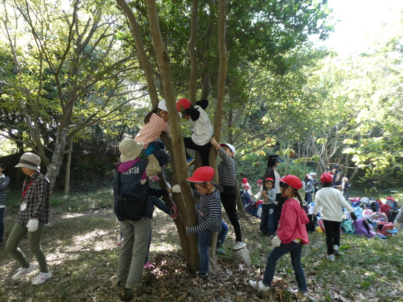 淡輪小学校1年生遠足「うみべの森散策」_c0108460_15272246.jpg