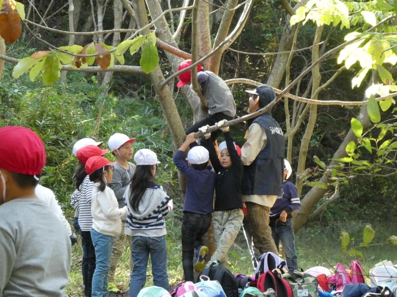 淡輪小学校1年生遠足「うみべの森散策」_c0108460_15275120.jpg