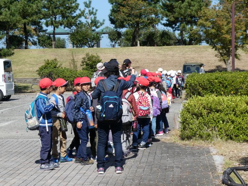 淡輪小学校1年生遠足「うみべの森散策」_c0108460_15291651.jpg