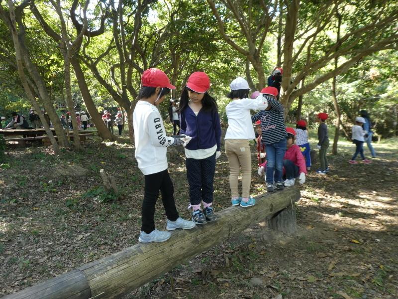 淡輪小学校1年生遠足「うみべの森散策」_c0108460_15291765.jpg