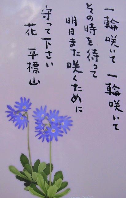 c0119160_08013126.jpg