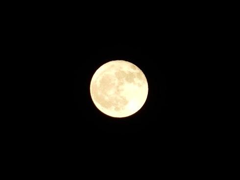 仮設住宅を十六夜月が照らす_e0175370_21292213.jpg