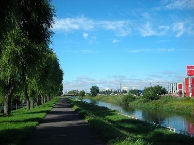 創成川緑地と川沿いの並木_f0078286_17353107.jpg