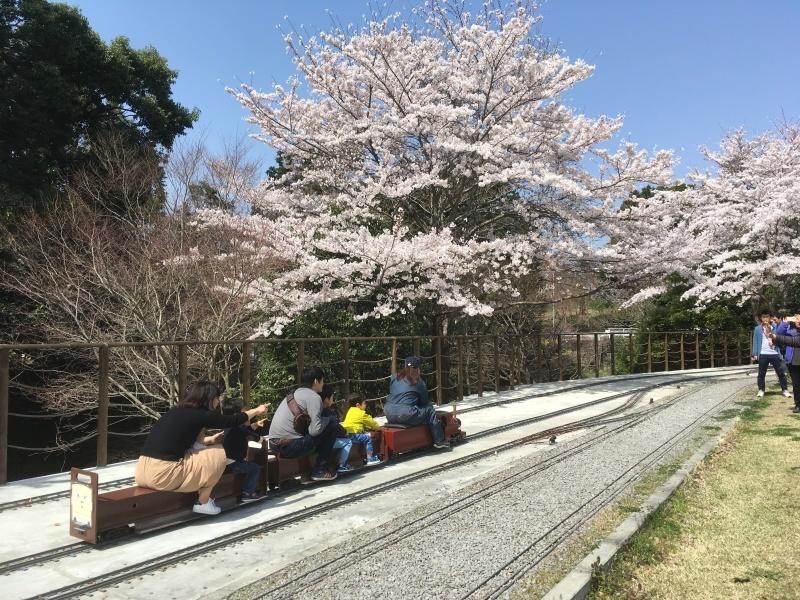 裾野市にある鉄道模型王国『日本庭園鉄道』!_d0367998_15564299.jpg