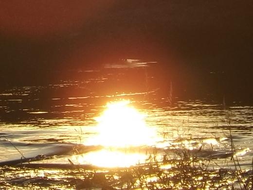 夕陽タイムに_c0141013_18213282.jpg