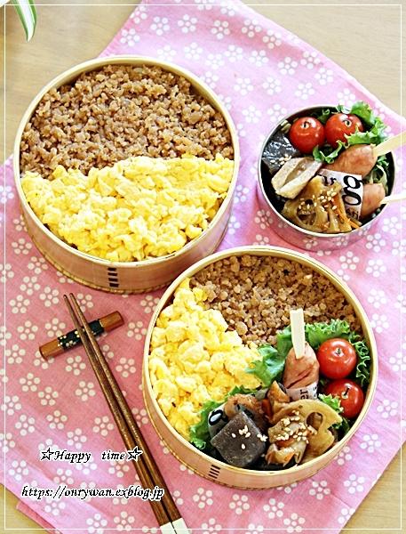 そぼろ弁当とIKEAで50円ソフト♪_f0348032_17242622.jpg