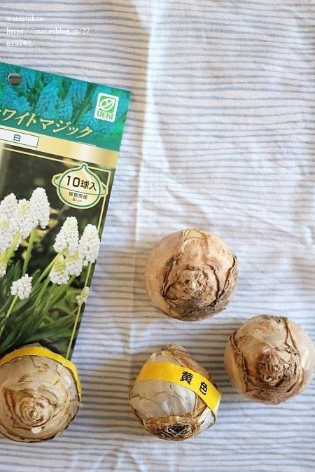 水栽培の準備とお気に入りの花器_e0214646_15092240.jpg