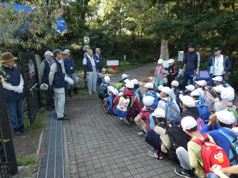 東光小学校4年生遠足「里山体験」サポート_c0108460_16181618.jpg