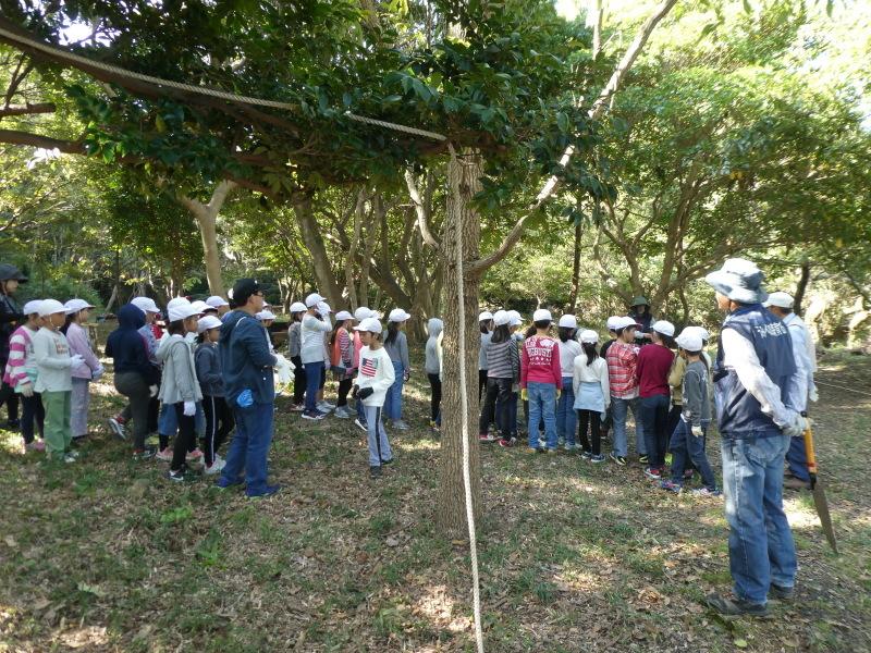 東光小学校4年生遠足「里山体験」サポート_c0108460_16204415.jpg