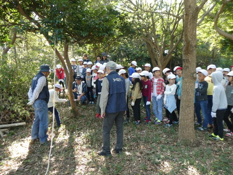 東光小学校4年生遠足「里山体験」サポート_c0108460_16204591.jpg
