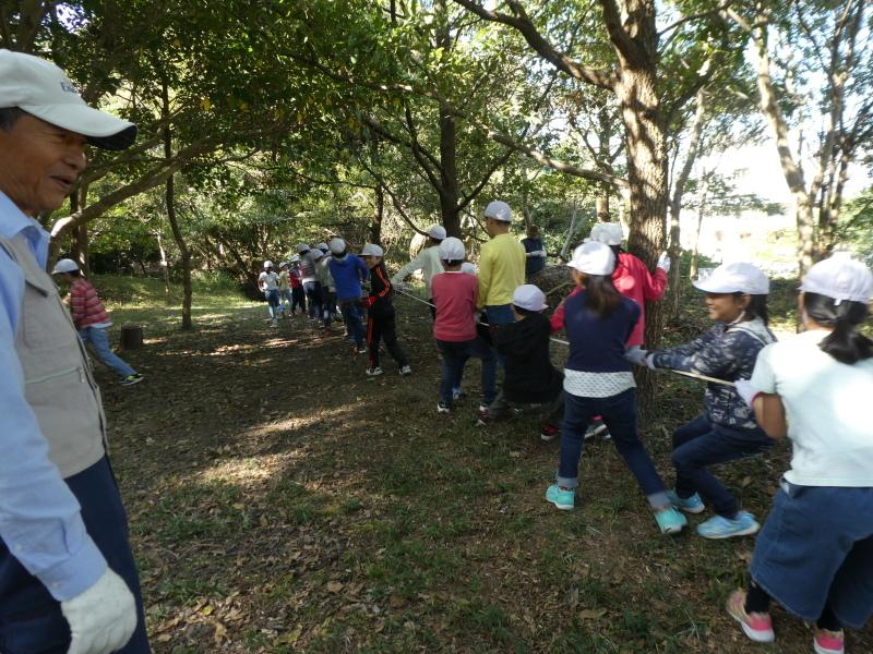 東光小学校4年生遠足「里山体験」サポート_c0108460_16220803.jpg