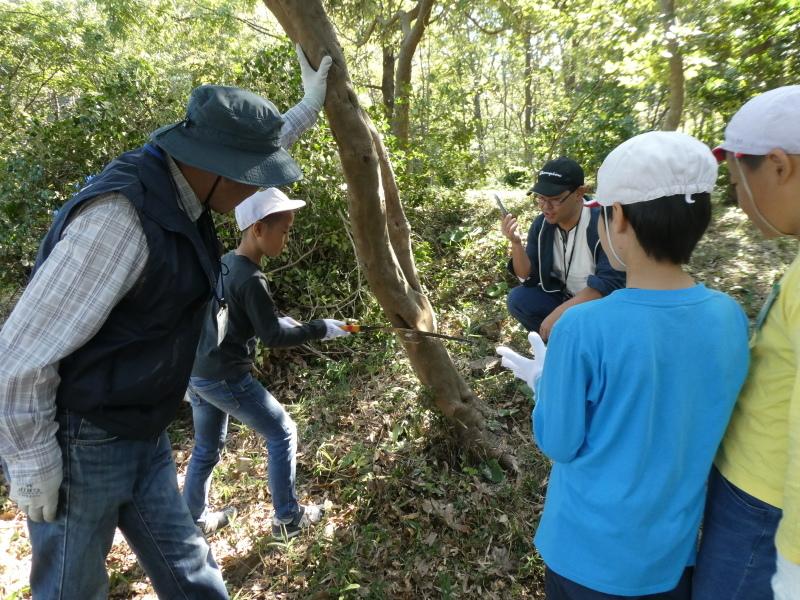 東光小学校4年生遠足「里山体験」サポート_c0108460_16221045.jpg