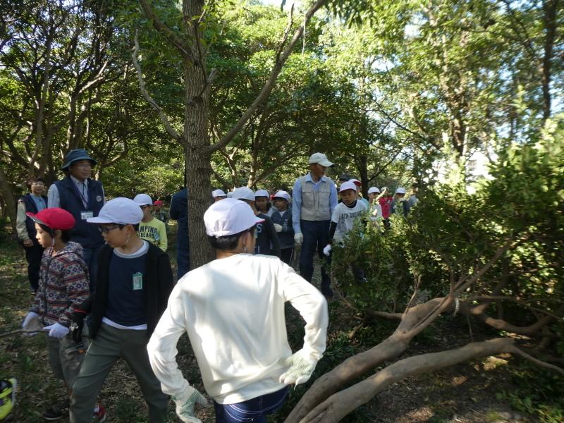 東光小学校4年生遠足「里山体験」サポート_c0108460_16264493.jpg