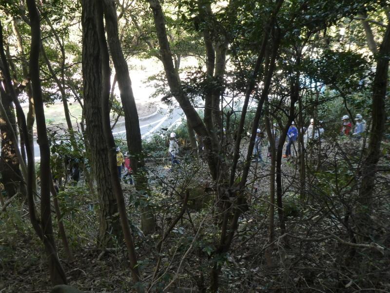 東光小学校4年生遠足「里山体験」サポート_c0108460_16293965.jpg