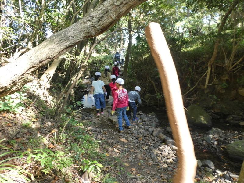 東光小学校4年生遠足「里山体験」サポート_c0108460_16311953.jpg