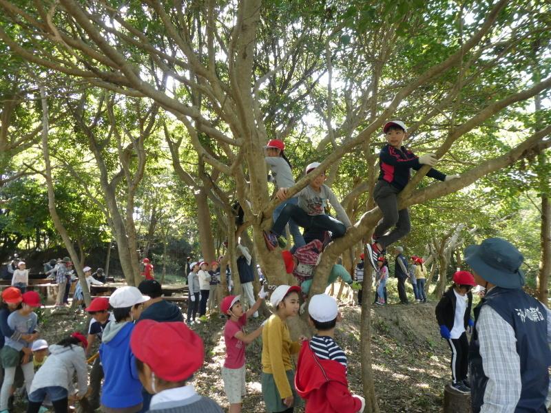 東光小学校4年生遠足「里山体験」サポート_c0108460_16361621.jpg