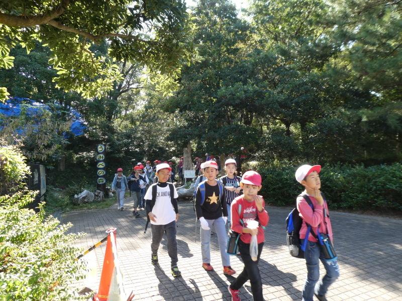 東光小学校4年生遠足「里山体験」サポート_c0108460_16401748.jpg