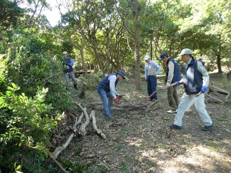 東光小学校4年生遠足「里山体験」サポート_c0108460_16414332.jpg