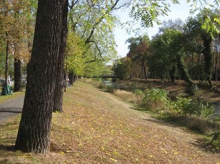 秋のアール・タールを訪ねて_a0280569_21532881.jpg