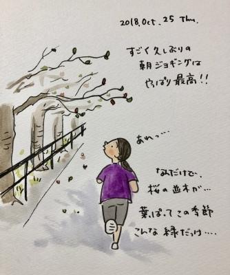公園の桜の葉_f0072976_11130768.jpeg