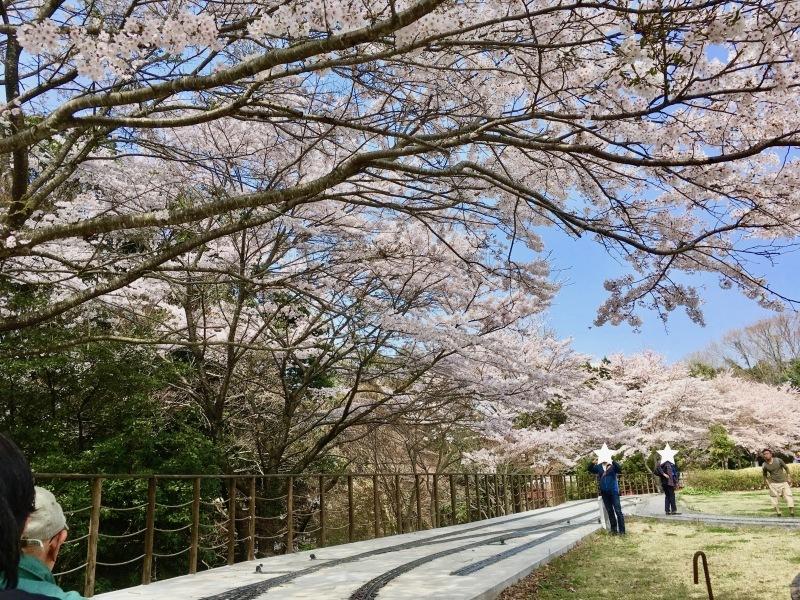 裾野市にある鉄道模型王国『日本庭園鉄道』!_d0367998_07122765.jpg