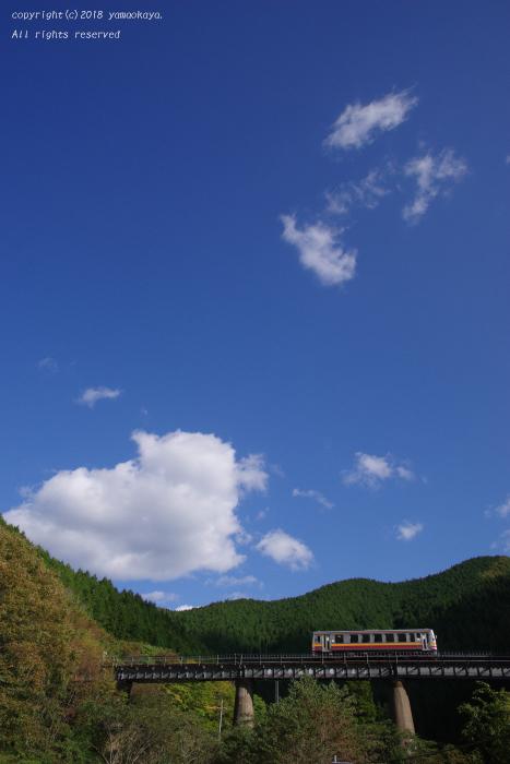 秋の高い空を_d0309612_00245882.jpg
