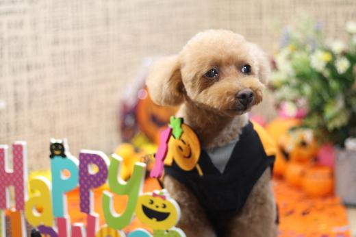10月25日ご来店のお客様です!!_b0130018_20063758.jpg